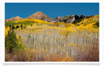 Kebler Pass Mountainside Color