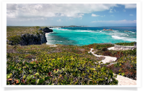Middle Caicos Path