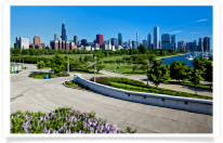 Skyline and flowers from Shedd Aquarium
