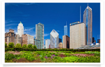 Lurie Garden and Chicago Skyline