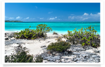 Bay at Dellis Cay
