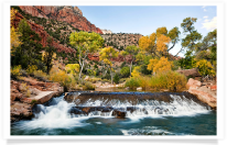 Zion Canyon Cascades and Fall Color