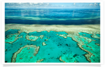 Aerial Great Barrier Reef River and Ocean